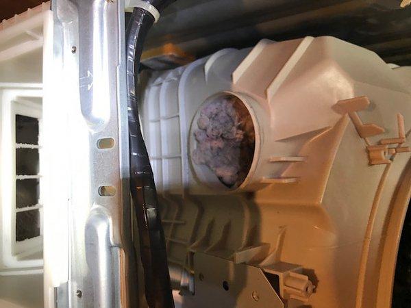 鹿児島・宮崎へのドラム式洗濯機の分解清掃も出張承ります!!の画像